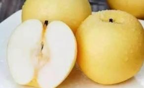 感冒流鼻涕吃什么水果好